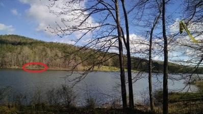 Zip line at Lake Trail