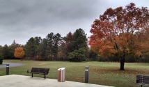 More fall foliage