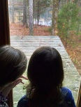 Anne and Dorothy looking at the deer by the pond