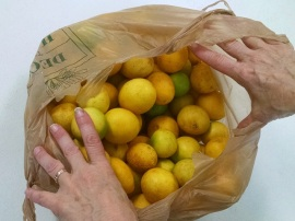bag of key limes