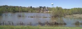 Lots of standing water beside the highway
