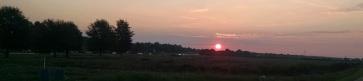 Sunrise on our walk